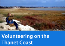 Volunteering on the Thanet Coast