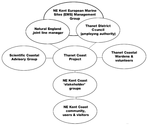 Management Scheme Diagram 2007